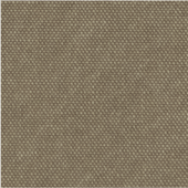 CanvasBeige